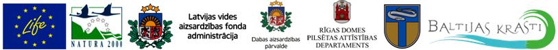Logo ansamblis