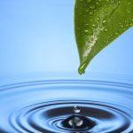 iWater – Integrēta lietusūdens pārvaldība. Projekta mērķi un rezultāti
