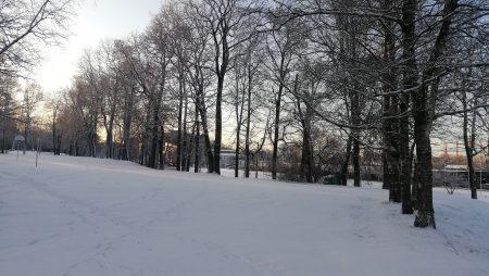 Daudzfunkcionālas publiskās ārtelpas attīstība Rīgas pilsētas apkaimēs