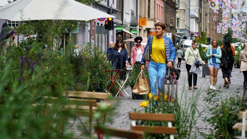 Turpinot pētījumu par pilsētas vasaras ielas projektu Tērbatas ielā, intervēs  iedzīvotājus un uzņēmējus