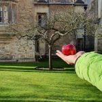 Jauno uzņēmēju apmācībām Kembridžā pretendē 88 interesenti