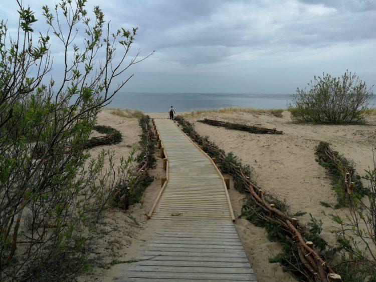 """Noslēdzies projekts par piekrastes biotopu aizsardzību dabas parkā """"Piejūra"""""""